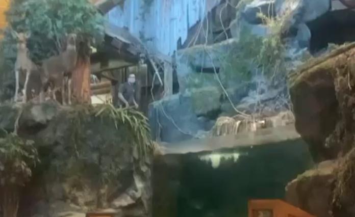 Bass Pro fish tank jumper
