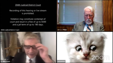 Cat filter zoom court case video