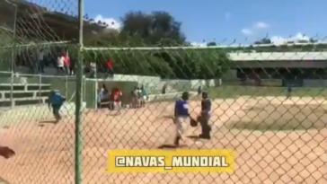 Cubs prospect bat attack