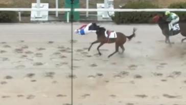 Japanese horse jockey beats his horse to the line