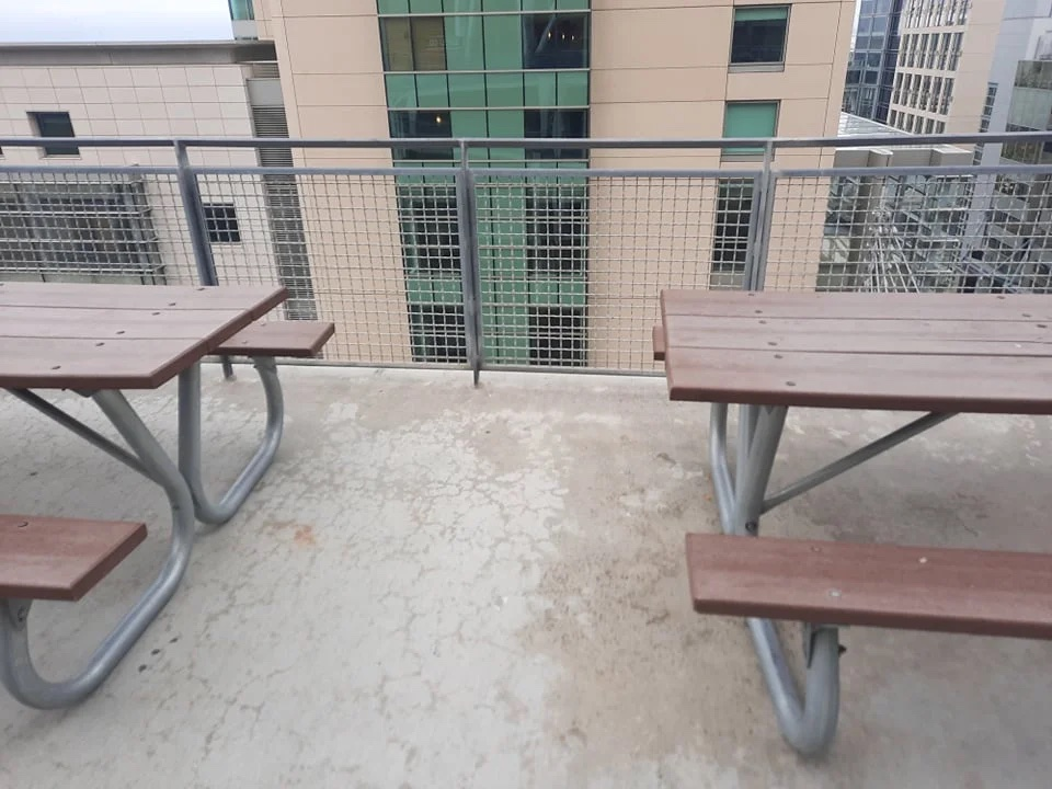 Mother son fell death Petco Park table