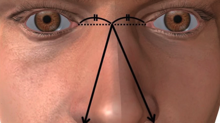 Nose size bigger penis research