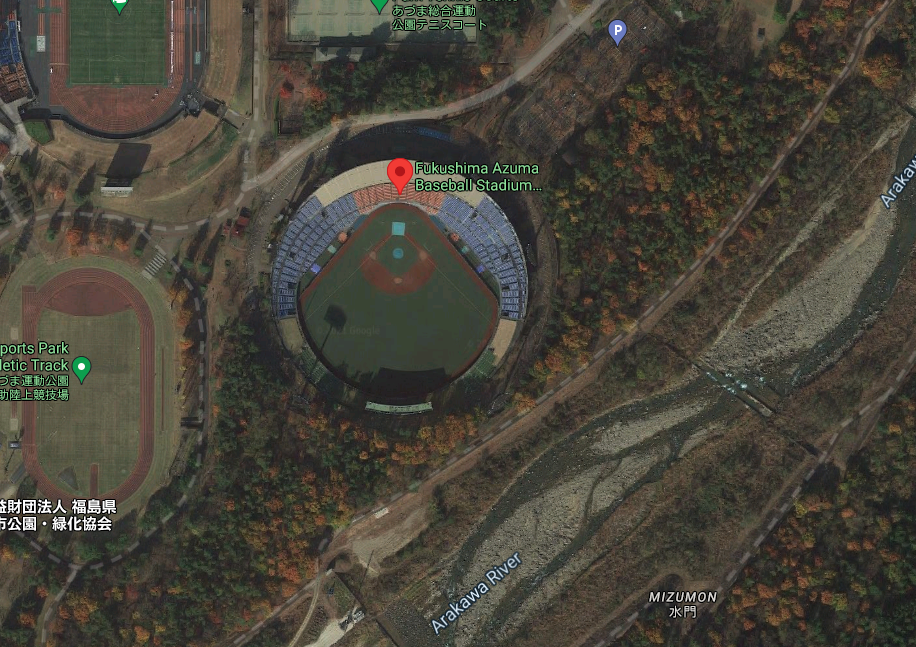 Olympics softball bear sighting