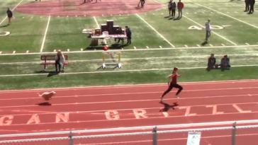 Utah dog wins relay track race