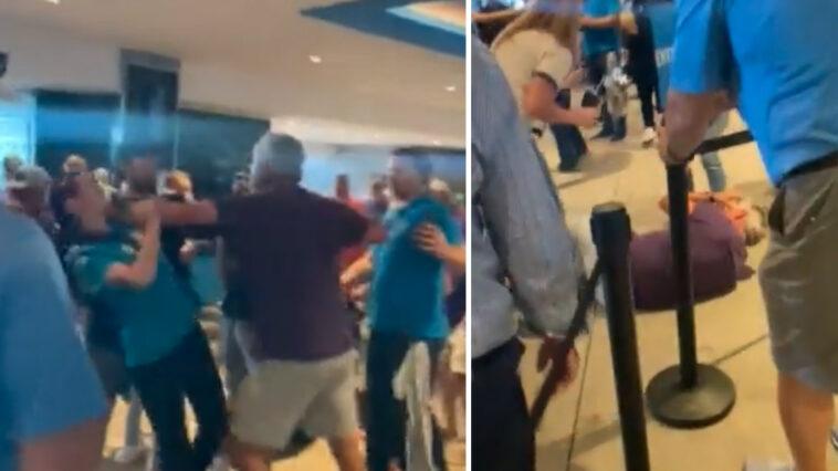 Vikings Panthers fan fight video